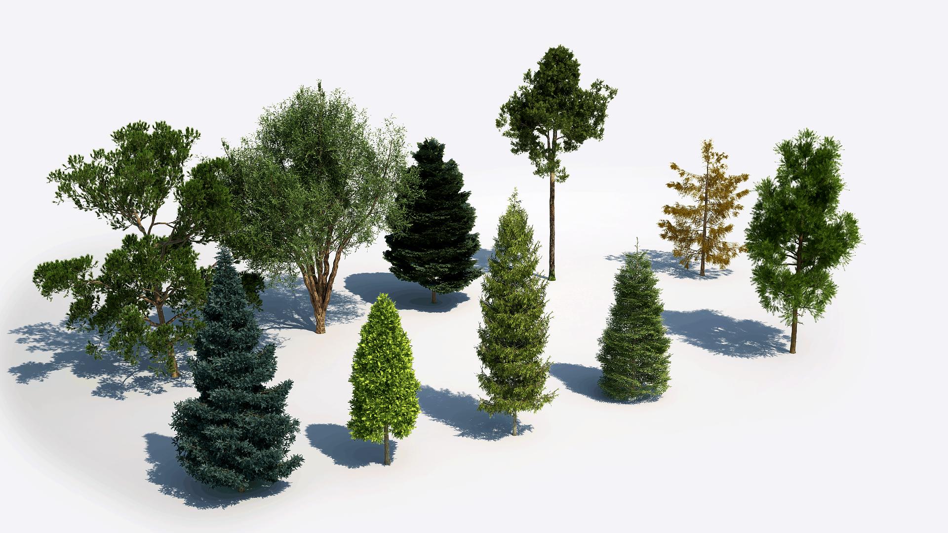 Plants Kit 5