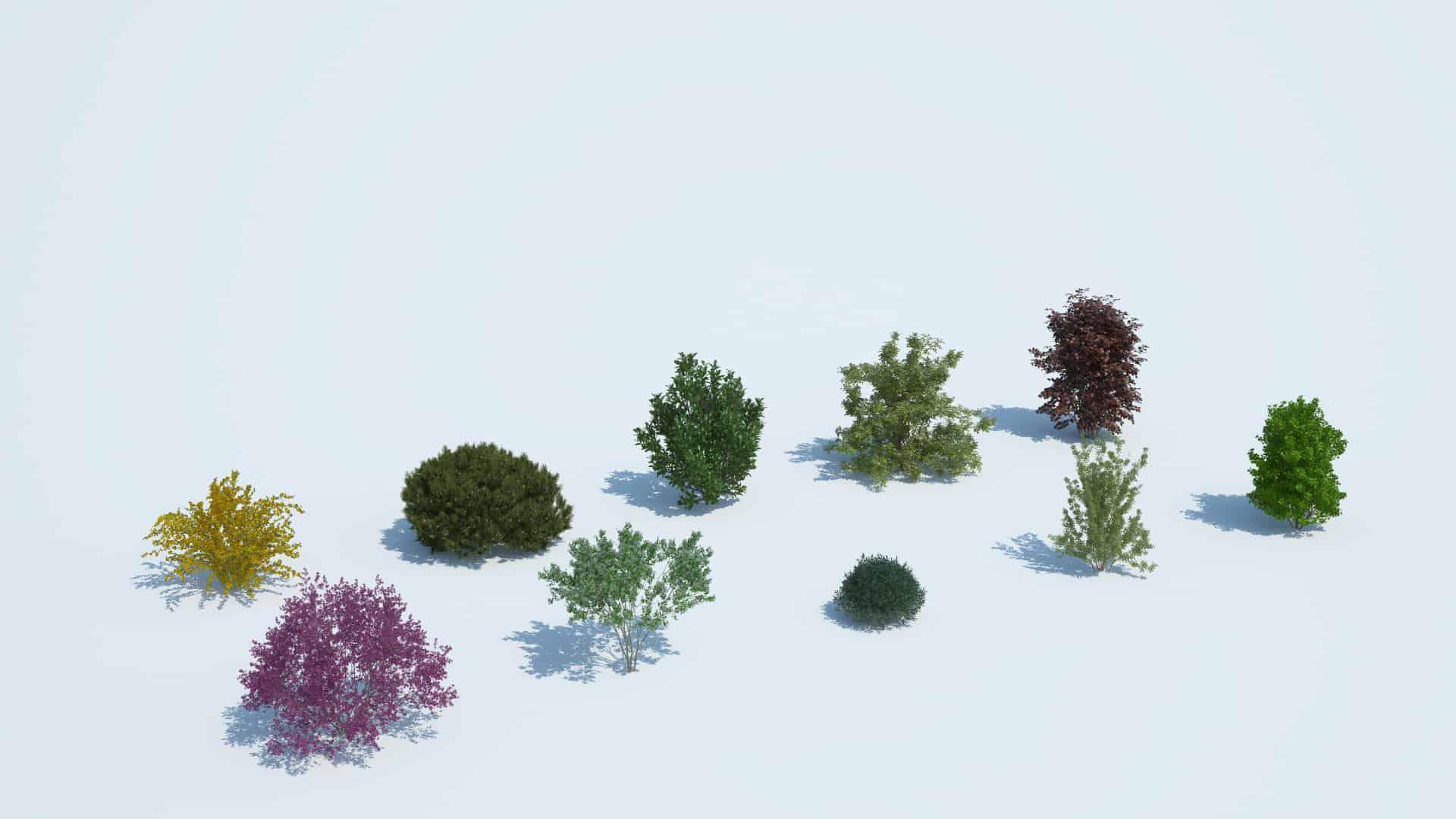 Plants Kit 8