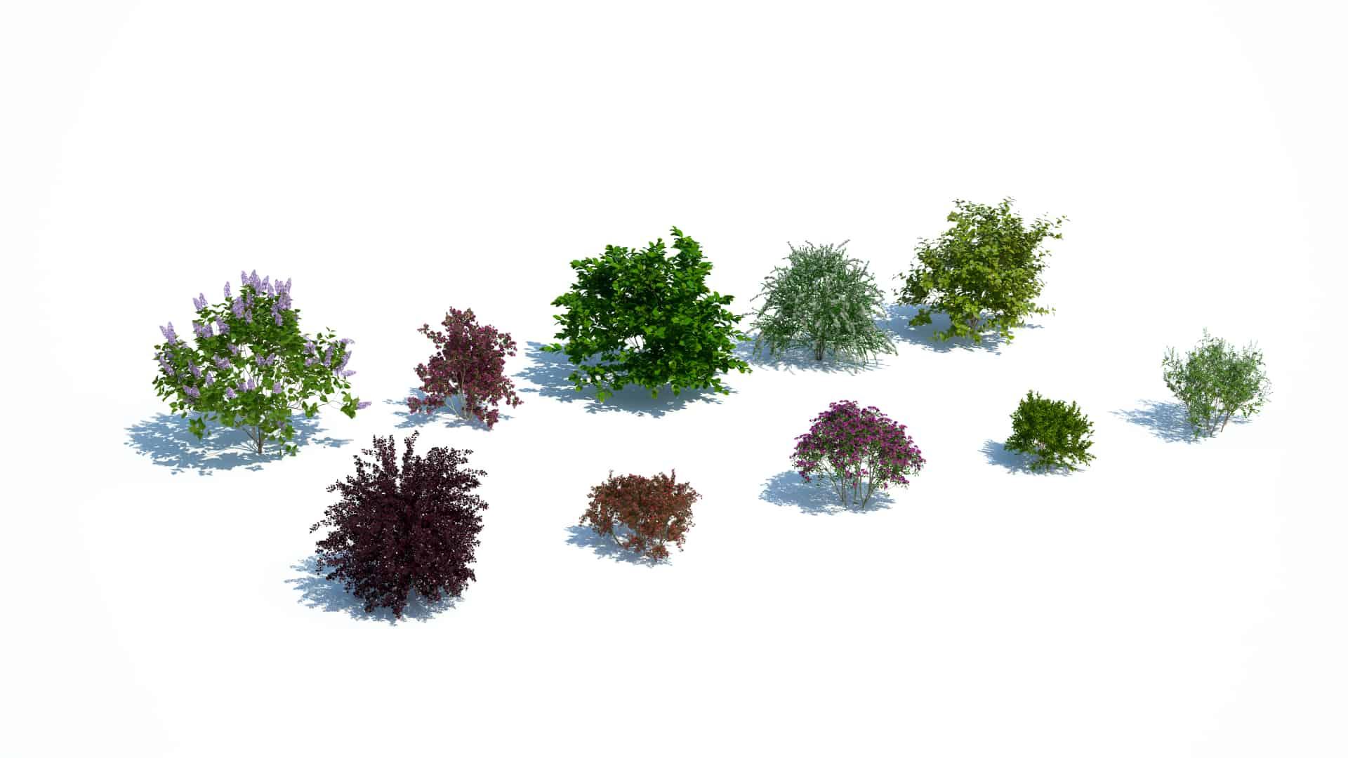 Plants Kit 9