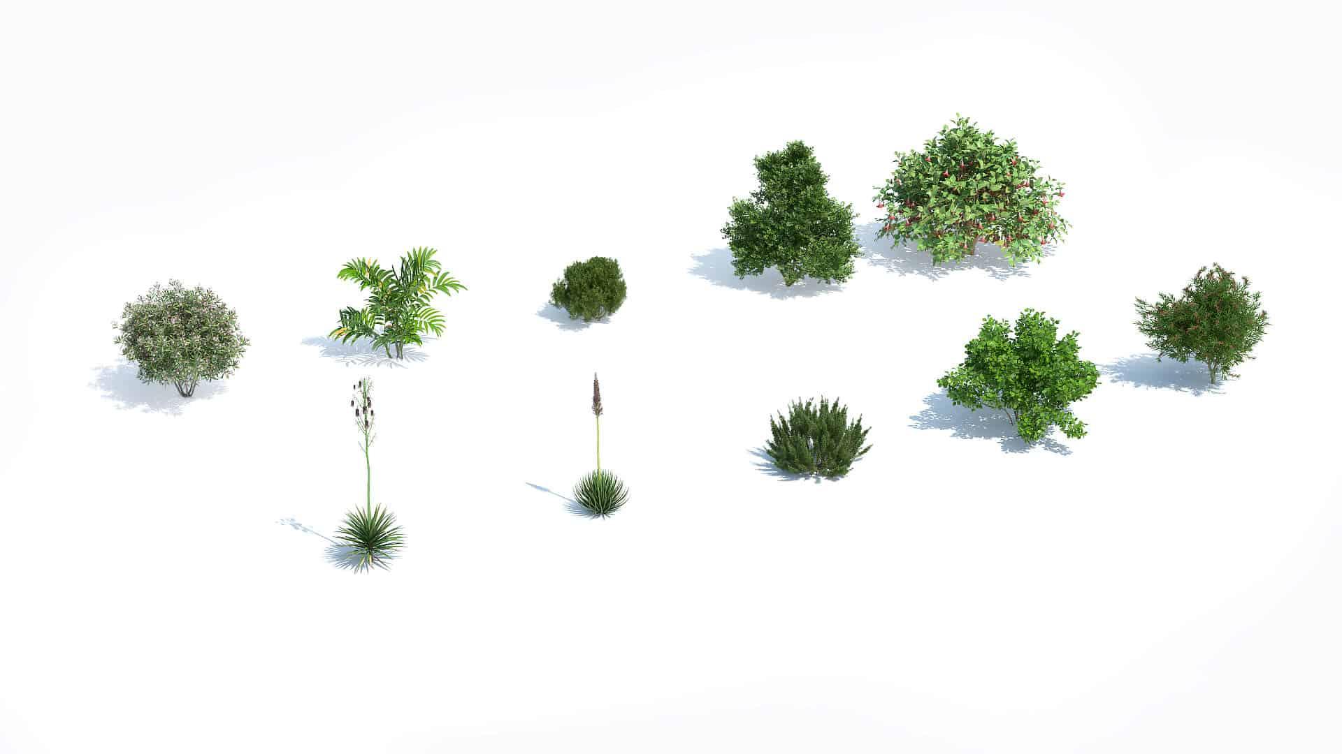 Plants Kit 12